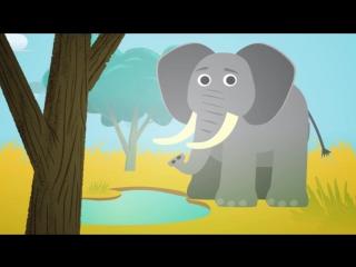 Животные для детей_ дикие животные в Африке, развивающие мультики для самых мале