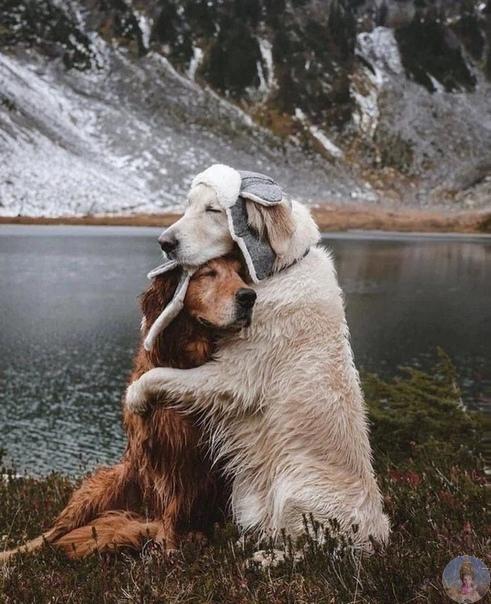 Любовь делает чудеса...