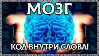 ЧТО ТАКОЕ МОЗГ? Буквица открывает тайну слова мозг! ОСОЗНАНКА