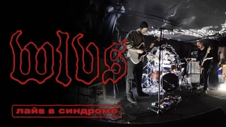 WLVS - live @ Syndrome (Ekb)