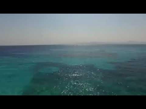 Tagesschnorcheltour zur Giftun Insel