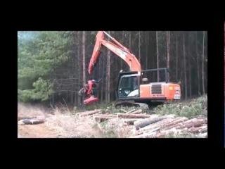 SP861LF harvesting plantation pine on Hitachi Zaxis 200 excavator
