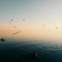 фотография Алевтина Гусева