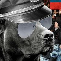 Фотография Никиты Нововерова ВКонтакте