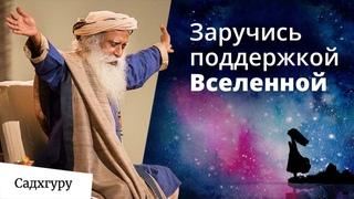 Как жить, чтобы Вселенная поддерживала тебя