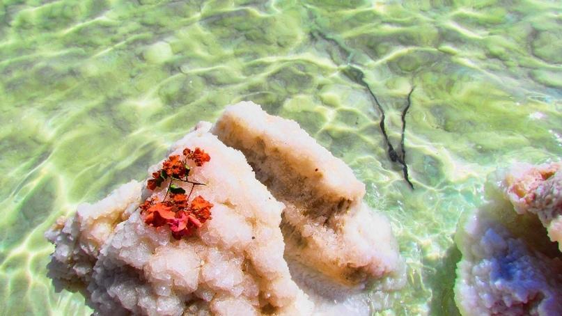 Мёртвое море., изображение №2